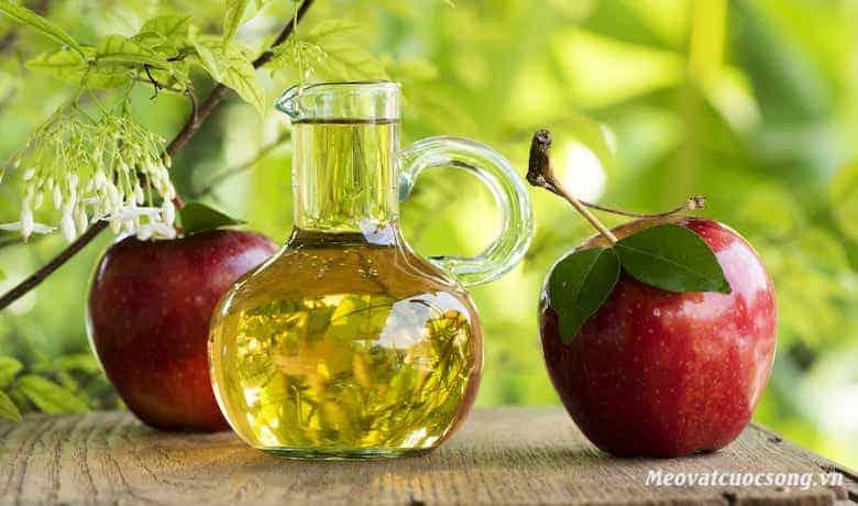 Sử dụng giấm táo trị ong đốt