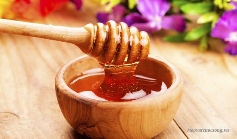 Sử dụng mật ong trị ong đốt