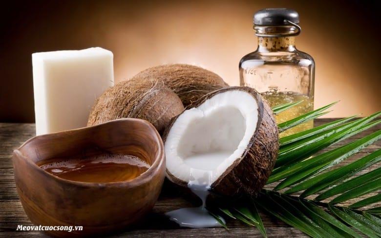 Sử dụng tinh dầu dừa giúp giảm béo